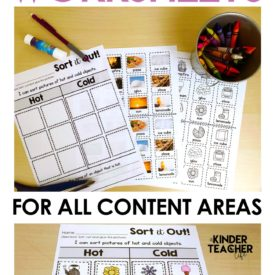 Sorting Worksheets for all Content Areas (FREEBIE included!)
